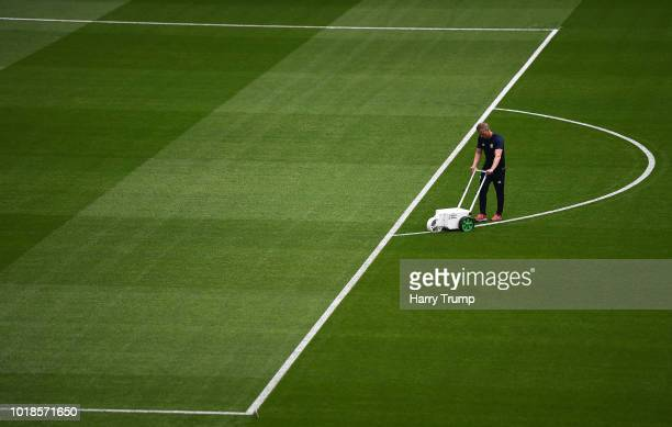 General view as a Groundsman paints the lines prior to kick off during the Premier League match between Cardiff City and Newcastle United at Cardiff...