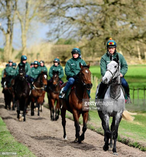 General view as a Horse makes their way down the gallops led by Bristol De Mai during a Nigel TwistonDavies Stable Visit at Grange Hill Farm on March...