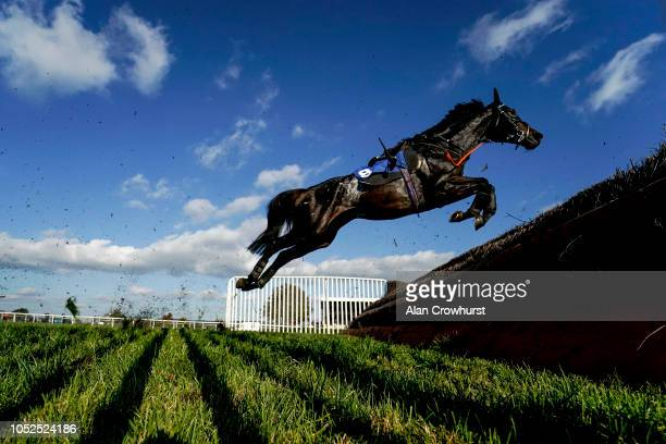 A general view as a loose horse clears the last at Wincanton Racecourse on October 19 2018 in Wincanton England
