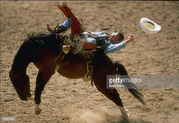 General view as a rider barely holds on to a bucking bronco during the 101st Cheyenne Frontier Days Rodeo on July 20 1997 in Cheyenne Wyoming