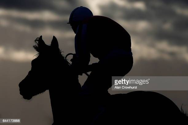 A general view as a runner and rider make their way to the start at Chelmsford racecourse on February 23 2017 in Chelmsford England
