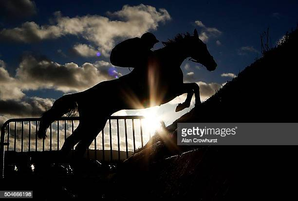 A general view as a runner clears a fence at Ludlow racecourse on January 12 2016 in Ludlow England