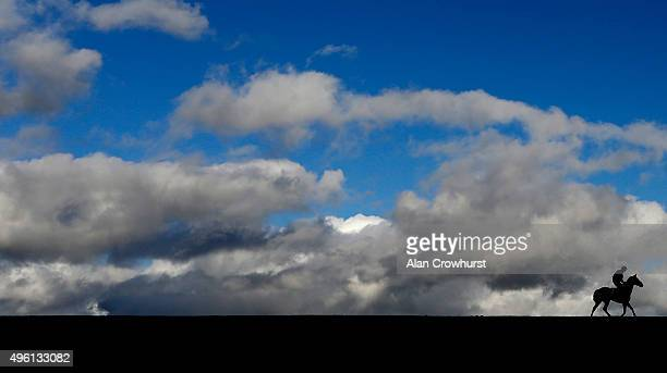 A general view as a runner makes its way to the start for The Bruton mares' Handicap Hurdle Race at Wincanton racecourse on November 07 2015 in...