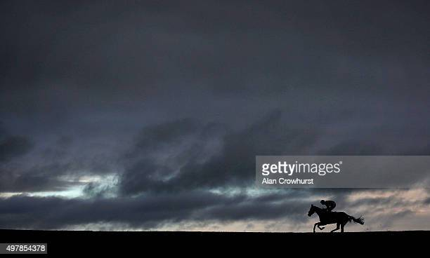 A general view as a runner races down the back straight at Wincanton racecourse on November 19 2015 in Wincanton England