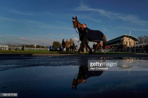 A general view as a runner walks in the pre parade ring at Warwick Racecourse on December 13 2018 in Warwick England