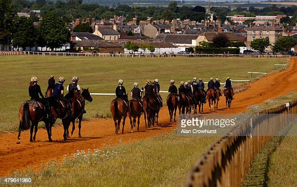A general view as a string of horses makes its way to the bottom of Warren Hill gallop in Newmarket on July 06 2015 in Newmarket England