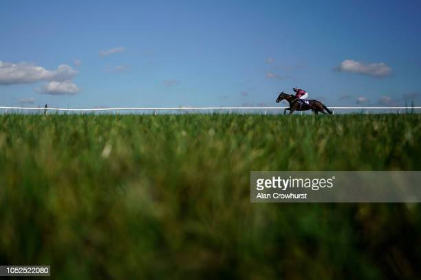 A general view as a tailed off runner races down the back straight at Wincanton Racecourse on October 19 2018 in Wincanton England