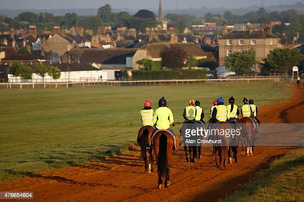 A general view as horses make their way back down the gallop in Newmarket on June 11 2015 in Newmarket England