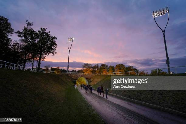 General view as horses make their way from the tunnel under the course to the parade ring at Chelmsford City Racecourse on October 29, 2020 in...