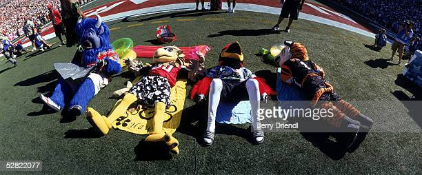 General view as NFL Mascots sunbathe on the sidelines prior to the NFL Pro Bowl on February 13 2005 at Aloha Stadium in Honolulu Hawaii The AFC team...