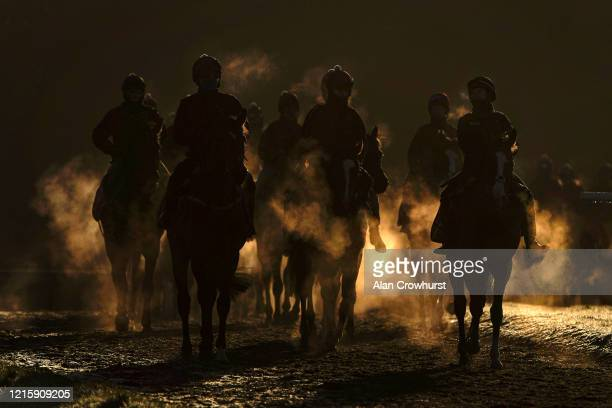 A general view as racehorses return from exercising on the Warren Hill gallop as the sun rises above the trees on March 31 2020 in Newmarket England