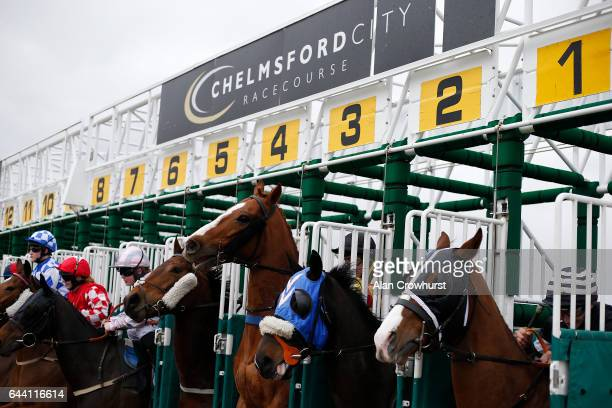 A general view as runers leave the stalls at Chelmsford racecourse on February 23 2017 in Chelmsford England