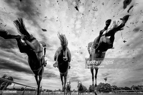 A general view as runners clear a fence at Fontwell Park Racecourse on August 30 2018 in Fontwell United Kingdom