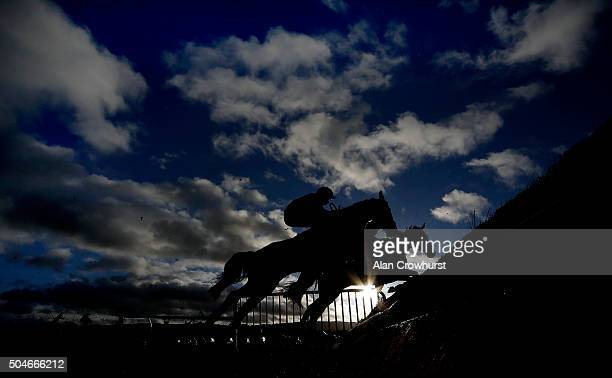 A general view as runners clear a fence at Ludlow racecourse on January 12 2016 in Ludlow England