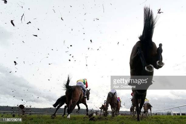 A general view as runners clear a fence in the back straight at Taunton Racecourse on February 19 2019 in Taunton England