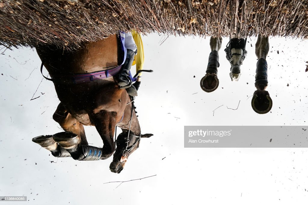 UNS: Offbeat Sports Pictures of the Week - March 25