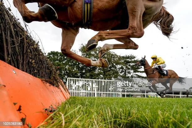 A general view as runners clear a flight of hurdles at Fontwell Park Racecourse on August 30 2018 in Fontwell United Kingdom