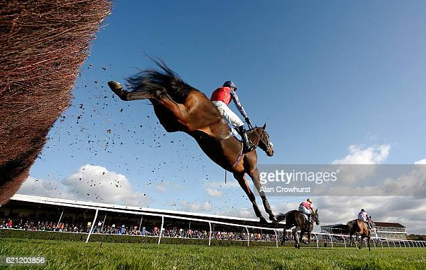 A general view as runners clear the fence in front of the grandstands at Wincanton Racecourse on November 5 2016 in Wincanton England