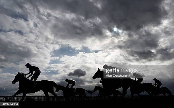 A general view as runners ease down after finishing at Newmarket racecourse on September 24 2015 in Newmarket England