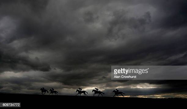 A general view as runners ease down after finishing at Newmarket Racecourse on September 22 2016 in Newmarket England