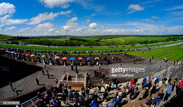 A general view as runners in The Weatherbys Sports Publishing Stakes race towards the finish Goodwood racecourse on May 22 2014 in Chichester England
