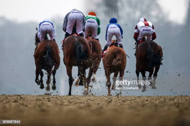 A general view as runners leave the stalls and race down the back straight at Lingfield Park racecourse on March 3 2018 in Lingfield England