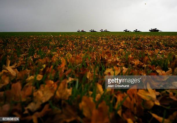 A general view as runners race down the back straight on an Autumn day in The Wincanton Interactive Maiden Hurdle race at Wincanton Racecourse on...