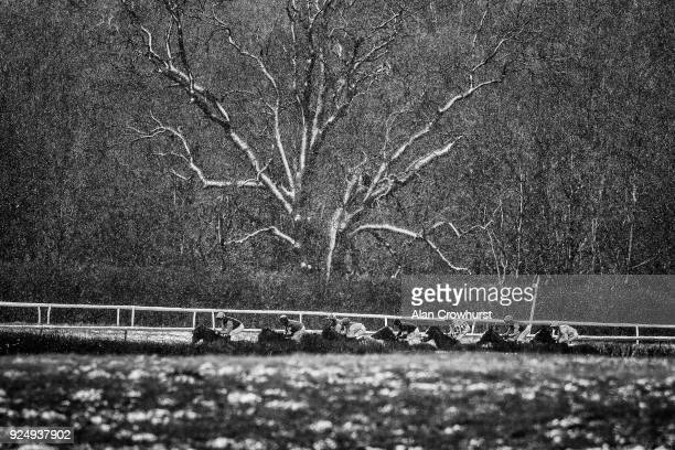 A general view as runners race down the side of the track as snow falls at Lingfield Park racecourse on February 27 2018 in Lingfield England
