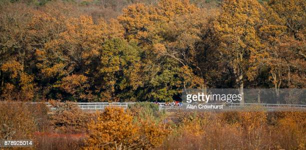 A general view as runners race down the side of the track at Ascot racecourse on November 25 2017 in Ascot United Kingdom