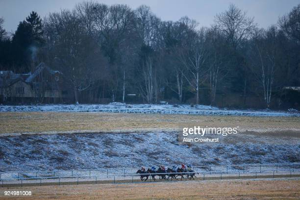 A general view as runners race down the side of the track at Lingfield Park racecourse on February 27 2018 in Lingfield England