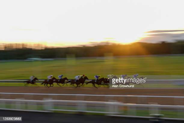 General view as runners race down the straight with a circuit to go in The Download The At The Races App Maiden Stakes at Wolverhampton Racecourse on...