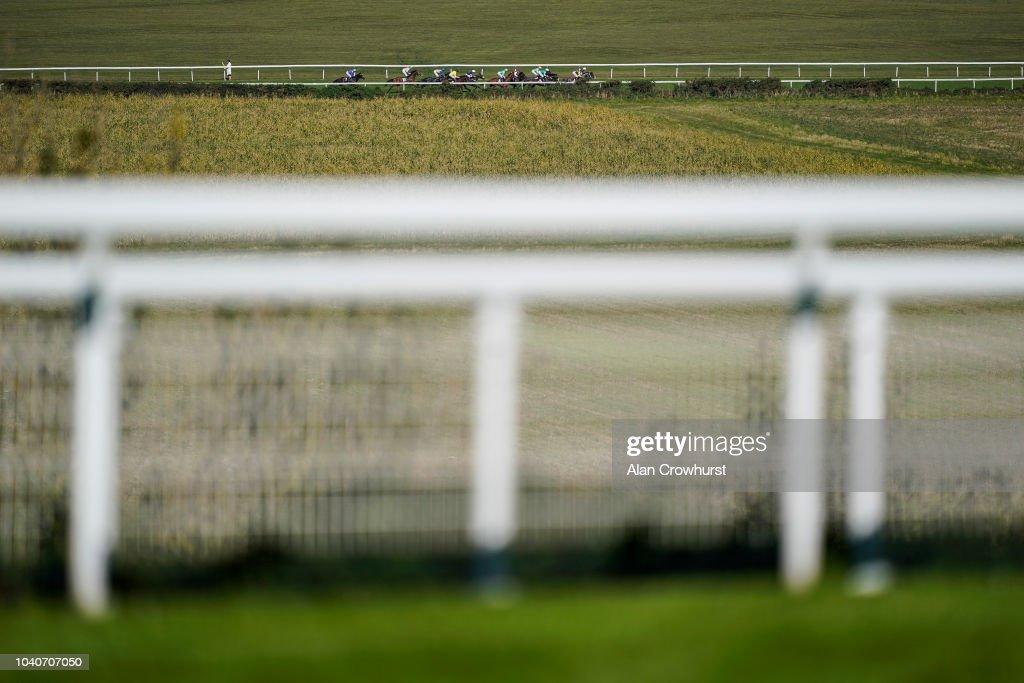 Goodwood Races