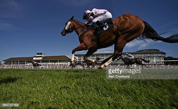 A general view as runners race towards the finish at Lingfield Park on August 24 2016 in Lingfield England