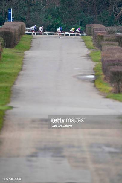 General view as runners run dowwn the side of the track during The Matchbook Best Odds Handicap Chase at Ascot Racecourse on January 23, 2021 in...