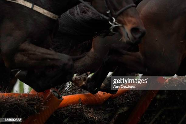 A general view as runners skip over a hurdle on Gold Cup Day at Cheltenham Racecourse on March 15 2019 in Cheltenham England