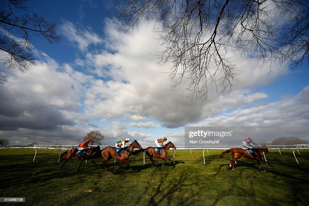 A general view as runners take the top bend in The At The Races Virgin 535 Mares' Novices' Hurdle Race at Plumpton racecourse on February 15, 2016 in Plumpton, England.