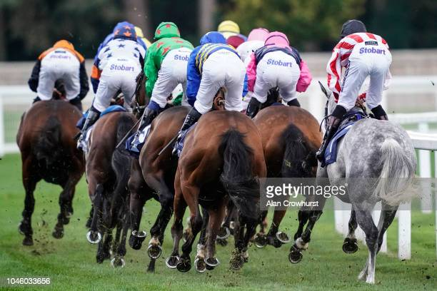 A general view as runners turn down the side of the track at Ascot Racecourse on October 5 2018 in Ascot United Kingdom