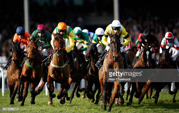 A general view as runners turn into the back straight in The Timeform Novices' Handicap Steeple Chase at Cheltenham racecourse on January 30 2016 in...