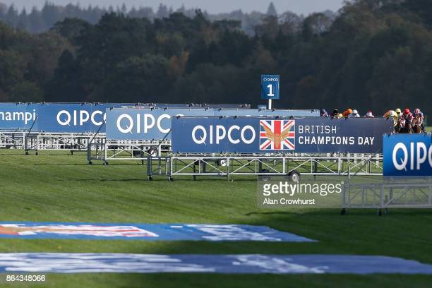 A general view as Ryan Moore riding Order Of St George on their way to winning The Qipco British Champions Long Distance Cup at Ascot racecourse on...