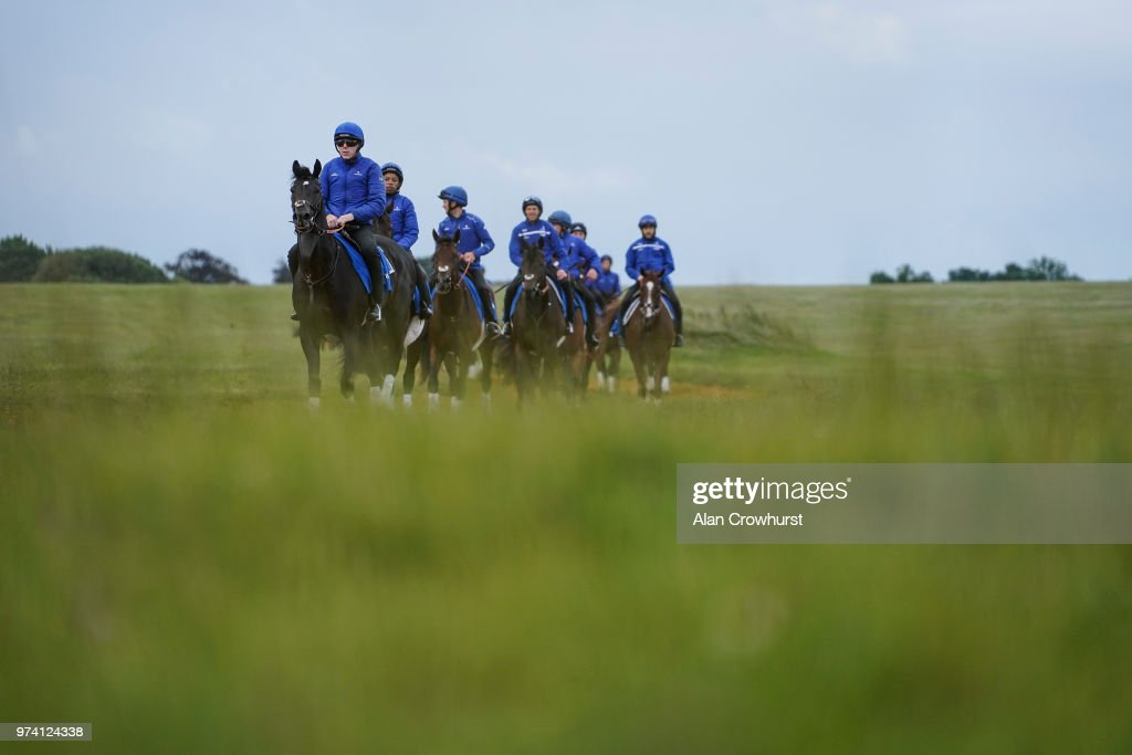 A general view as the Godolphin string return from the gallops on June 14, 2018 in Newmarket, England.