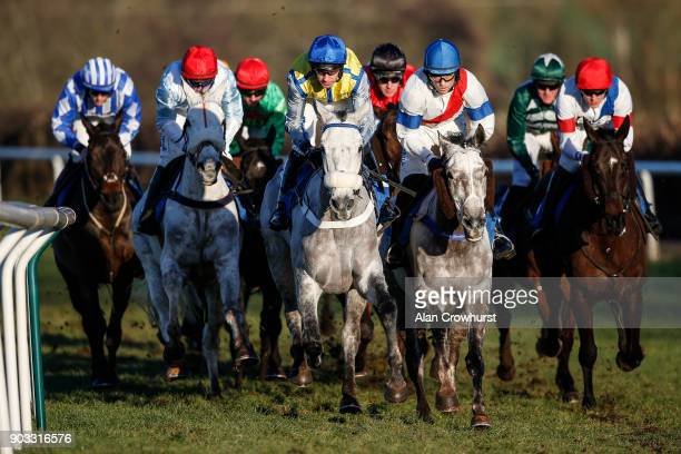 A general view as three greys lead the way at Ludlow racecourse on January 10 2018 in Ludlow England