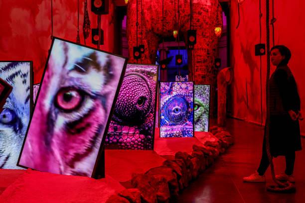 GBR: Heather Phillipson: Tate Britain Commission