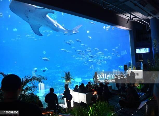 General view at Gunna Drip or Drown 2 A Listening Experience at Georgia Aquarium on February 19 2019 in Atlanta Georgia