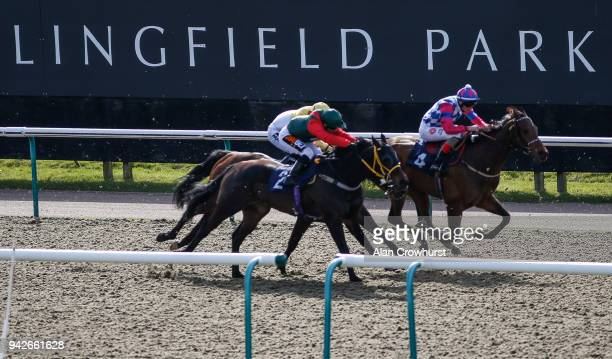 A general view at Lingfield Park racecourse on April 6 2018 in Lingfield England