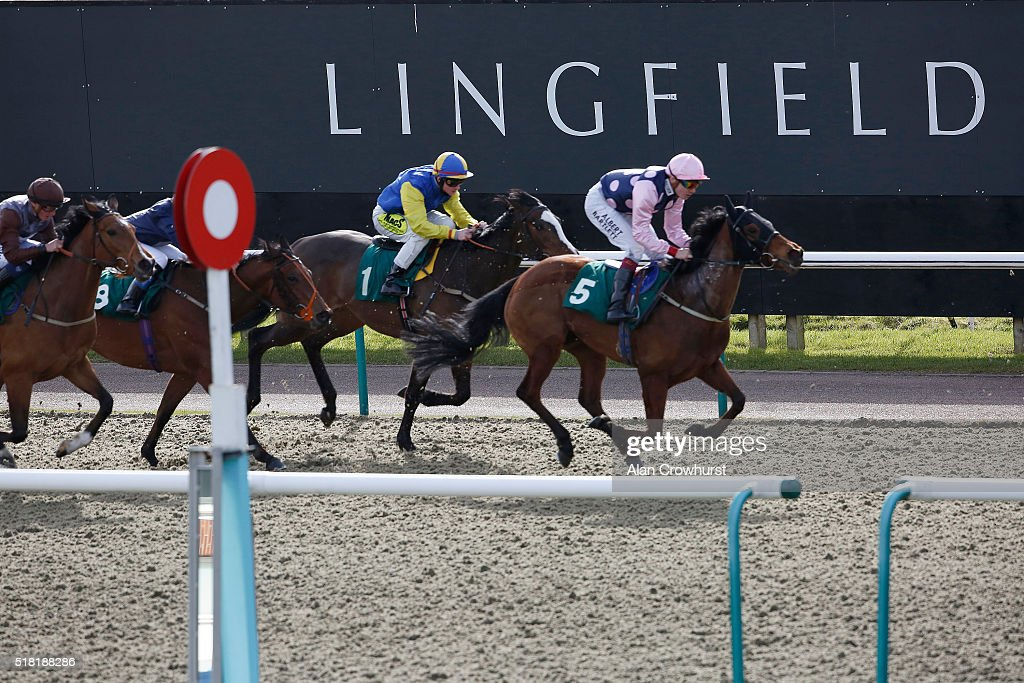 A general view at Lingfield racecourse on March 30, 2016 in Lingfield, England.
