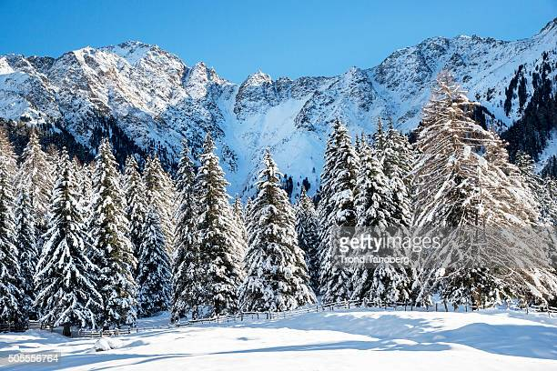 A general view at the IBU Biathlon World Cup Antholtz on January 18 2016 in Antholtz Italy