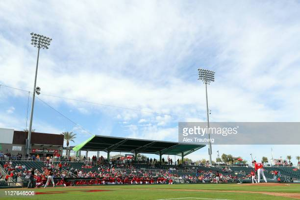 General view during a Spring Training game between the San Francisco Giants and the Cincinnati Reds on Tuesday February 26 2019 at Goodyear Ballpark...
