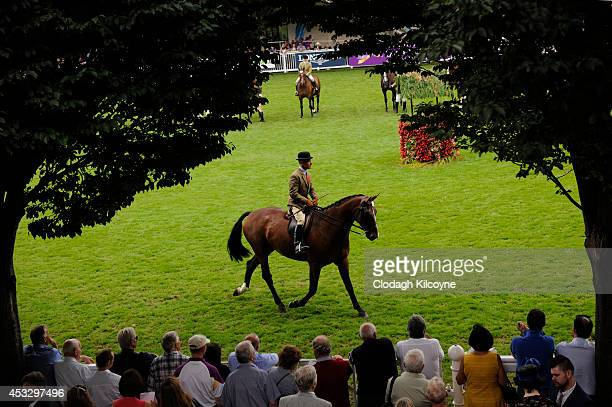 General view during Ladies Day at the Dublin Horse Show 2014 on August 7 2014 in Dublin Ireland