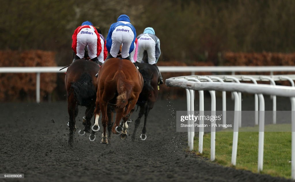 Easter family fun day kempton park racecourse pictures getty general view during the better odds with matchbook magnolia stakes during the easter family fun day negle Gallery