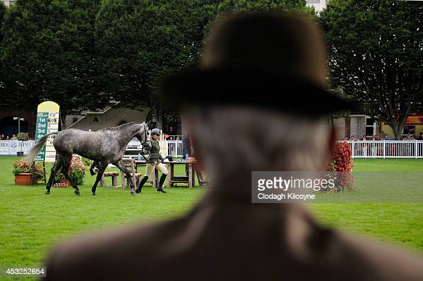 General view during the Dublin Horse Show 2014 on August 10 2014 in Dublin Ireland